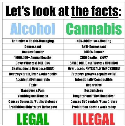 top 10 reasons cannabis is better than alcohol